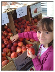 Selecting Nectarines